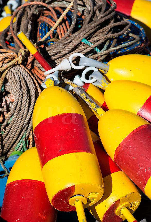 Colorful lobster buoys, Corea, Maine, USA