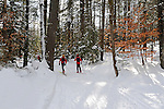 Cross Country Skiers Enjoying a Woods Ski Trail in Vermont