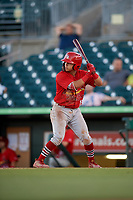 Palm Beach Cardinals second baseman Irving Lopez (15) at bat during a game against the Jupiter Hammerheads on August 4, 2018 at Roger Dean Chevrolet Stadium in Jupiter, Florida.  Palm Beach defeated Jupiter 7-6.  (Mike Janes/Four Seam Images)