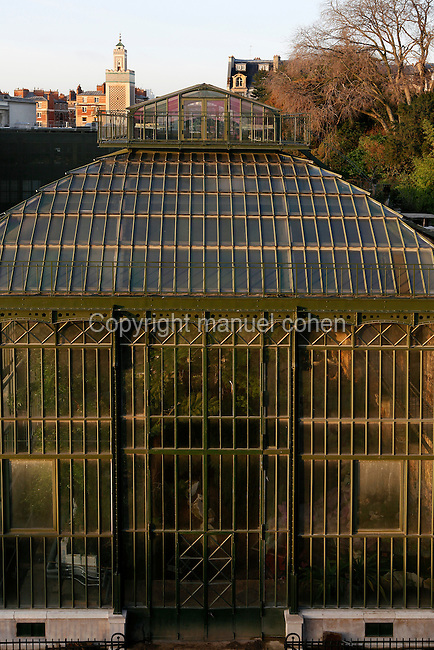 Plant History Glasshouse (formerly the Australian Glasshouse), 1830s, Charles Rohault de Fleury, Jardin des Plantes, Museum National d'Histoire Naturelle, Paris, France. High angle view showing the glass and iron roof structure in the early morning winter light. In the distance is the Grande Mosquee de Paris (Great Mosque of Paris).