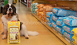 Partners Pets Photo Shoot  13th February 2012