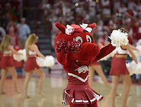 NWA Democrat-Gazette/ANDY SHUPE<br /> Arkansas Minnesota Saturday, Dec. 9, 2017, during the first half in Bud Walton Arena. Visit nwadg.com/photos to see more photographs from the game.