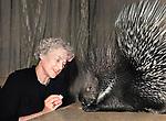 Training a porcupine Anna Durova daughter of renowned animal tamer Vladimir Durov and Durov s Nook performing animal theatre.