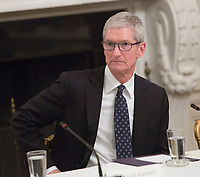 Apple CEO Tim Cook listens during an American Technology Council meeting at The White House in Washington, DC, June 19, 2017.<br /> Credit: Chris Kleponis / CNP /MediaPunch