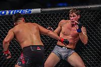 NOVA YORK, EUA, 02.11.2019 - UFC-NOVA YORK - Darren Till  (vermelho) e  Kelvin Gastelum  (azul) durante UFC 244 no Madison Square Garden na cidade de Nova York neste sábado, 02. (Foto: Vanessa Carvalho/Brazil Photo Press/Folhapress)