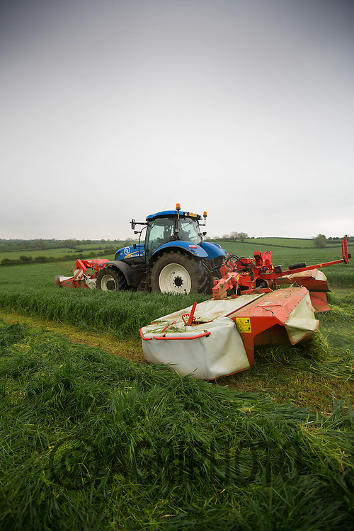 New Holland T7050 cutting grass for silage with Kuhn triple mower.Picture Tim Scrivener 07850 303986.tim@agriphoto.com.?.covering agriculture in the UK?.