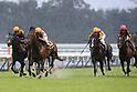 Horse Racing : Kikuka Sho (Japanese St. Leger) at Kyoto Racecourse