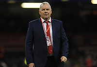 Wales Head Coach Wayne Pivac<br /> <br /> Photographer Ian Cook/CameraSport<br /> <br /> 2019 Autumn Internationals - Wales v Barbarians - Saturday 30th November 2019 - Principality Stadium - Cardifff<br /> <br /> World Copyright © 2019 CameraSport. All rights reserved. 43 Linden Ave. Countesthorpe. Leicester. England. LE8 5PG - Tel: +44 (0) 116 277 4147 - admin@camerasport.com - www.camerasport.com