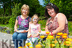 Joan Griffin Tralee, Kelly Hayes and Berni Hayes enjoying  the Community gardens at the  Feile na mBlath Park Festival in Tralee Town Park  on Saturday