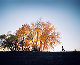 USA, Colorado, woman walking in Broomfield, Fall leaves