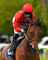 Ideological ridden by Jack Mitchell goes down to the start of The Byerley Stud British EBF Fillies' Handicap during Afternoon Racing at Salisbury Racecourse on 16th May 2019