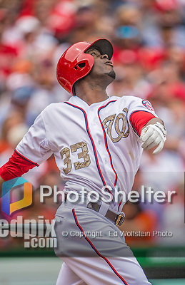 """27 May 2013: Washington Nationals outfielder Roger Bernadina (AKA """"The Shark"""") in action against the Baltimore Orioles at Nationals Park in Washington, DC. The Orioles defeated the Nationals 6-2, taking the Memorial Day, first game of their interleague series. Mandatory Credit: Ed Wolfstein Photo *** RAW (NEF) Image File Available ***"""
