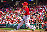 28 September 2014: Washington Nationals first baseman Adam LaRoche in action against the Miami Marlins at Nationals Park in Washington, DC. The Nationals shut out the Marlins 1-0, caping the season with the first Nationals no-hitter in modern times. The win also notched a 96 win season for the Nats: the best record in the National League. Mandatory Credit: Ed Wolfstein Photo *** RAW (NEF) Image File Available ***