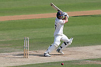 Ryan ten Doeschate hits 4 runs for Essex during Essex CCC vs Yorkshire CCC, Specsavers County Championship Division 1 Cricket at The Cloudfm County Ground on 8th July 2019