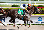 January 25, 2020: #5 Phat Man with jockey Irad Ortiz Jr. on board wins the Fred W Hooper GIII Stakes during the Pegasus World Cup Invitational at Gulfstream Park Race Track in Hallandale Beach, Florida. Liz Lamont/Eclipse Sportswire/CSM