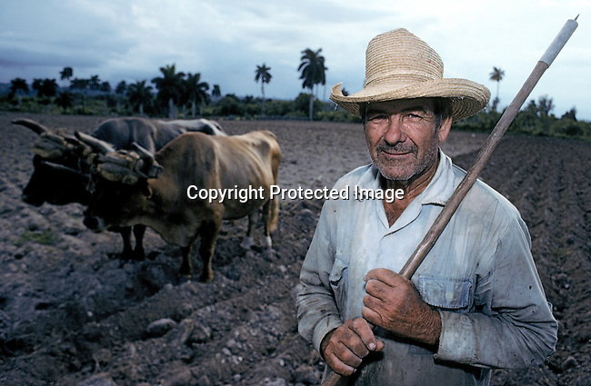 An unidentified farmer stands in his field with his oxen on July 7, 1993, in outside Havana, Cuba.  The country had a severe drop in economic growth since the expiration of aid from the former Soviet Union after the end of communism. Fidel Castro has ruled the communist island for over four decades, and been in war of words with the United States all since then. They country has a good education and medical level but lacks a free press and freedom of speech. (Photo by: Per-Anders Pettersson)
