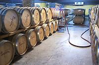 Oak barrel aging and fermentation cellar. Tsantali Vineyards & Winery, Halkidiki, Macedonia, Greece.