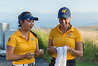 Kailua Kona, HI - October 24, 2016: The Cal Bears compete at the PAC 12 Preview at Nanea Golf Club.