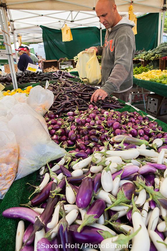 Customer selecting vegetables, eggplants in farmers market