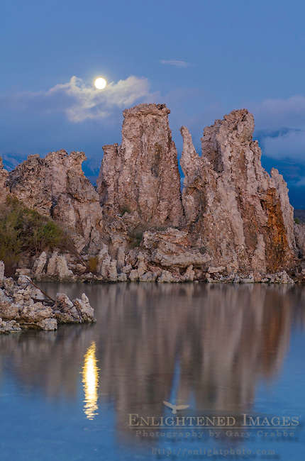 Moonset at dawn over tufa, South Shore, Mono Lake, Mono County, Eastern Sierra, California