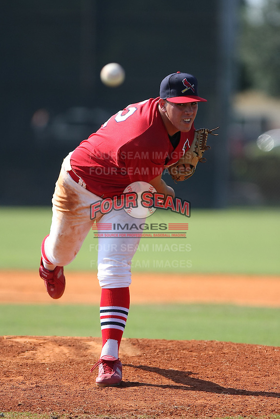 Pitcher Jose Fernandez participates in the World Wood Bat Classic at the Roger Dean Complex in Jupiter, Florida on October 22, 2010.  Photo By Stacy Jo Grant/Four Seam Images