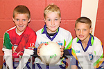 GAA FUN: Enjoying the VHI GAA Cu?l Camp at Listowel Emmets Club last Friday were l-r: David Noonan, Luke O'Sullivan, Paul McMahon.