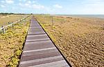 Boardwalk crossing shingle beach habitat at Landguard Point, Felixstowe, Suffolk, England, UK
