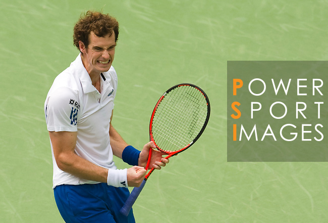 SHANGHAI, CHINA - OCTOBER 15:  Andy Murray of Great Britain celebrates match point to Jo-Wilfried Tsonga of France during day five of the 2010 Shanghai Rolex Masters at the Shanghai Qi Zhong Tennis Center on October 15, 2010 in Shanghai, China.  (Photo by Victor Fraile/The Power of Sport Images) *** Local Caption *** Andy Murray