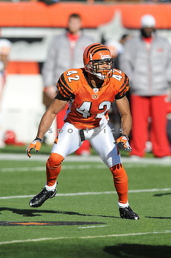 CHRIS CROOKER, of the  Cincinnati Bengals , in action  during the Bengals game against the Kansas CIty Chiefs on December 29, 2008 in Cincinnati, OH...Bengals win 16-6