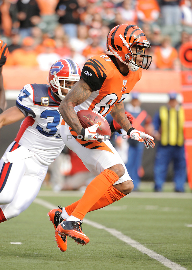 ANDRE CALDWELL, of the Cincinnati Bengals in action durIng the Bengals game against the Buffalo Bills at Paul Brown Stadium in CIncinnati, OH, on November 21, 2010...Bills beat the Bengals 49-31.