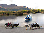 A jaunting car at Ross Castle, Killarney..Picture by Don MacMonagle