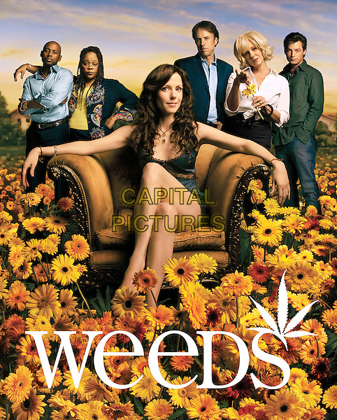 ROMANY MALCO, TONYE PATANO, MARY-LOUISE PARKER, KEVIN NEALON, ELIZABETH PERKINS & JUSTIN KIRK.in Weeds (Season 2).*Editorial Use Only*.Ref: FB.www.capitalpictures.com.sales@capitalpictures.com.Supplied by Capital Pictures.