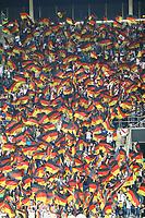 Deutsche Fans mit ihren Fahnen - 09.09.2018: Deutschland vs. Peru, Wirsol Arena Sinsheim, Freundschaftsspiel DISCLAIMER: DFB regulations prohibit any use of photographs as image sequences and/or quasi-video.