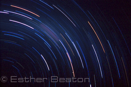 Star trails. Southern Hemisphere sky over central Australia.