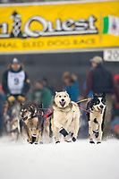 Musher Dave Dalton in Fairbanks on the Chena River at the start of the 1000 mile Yukon Quest sled dog race 2006, between Fairbanks, Alaska and Whitehorse, Yukon. Dubbed the toughest dogsled race in the world.