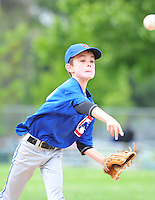 PNLL AA Cubs Action 2015. (Photo by AGP Photography)
