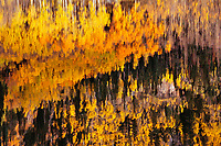 Reflection, Crystal Lake, Ouray, Colorado.