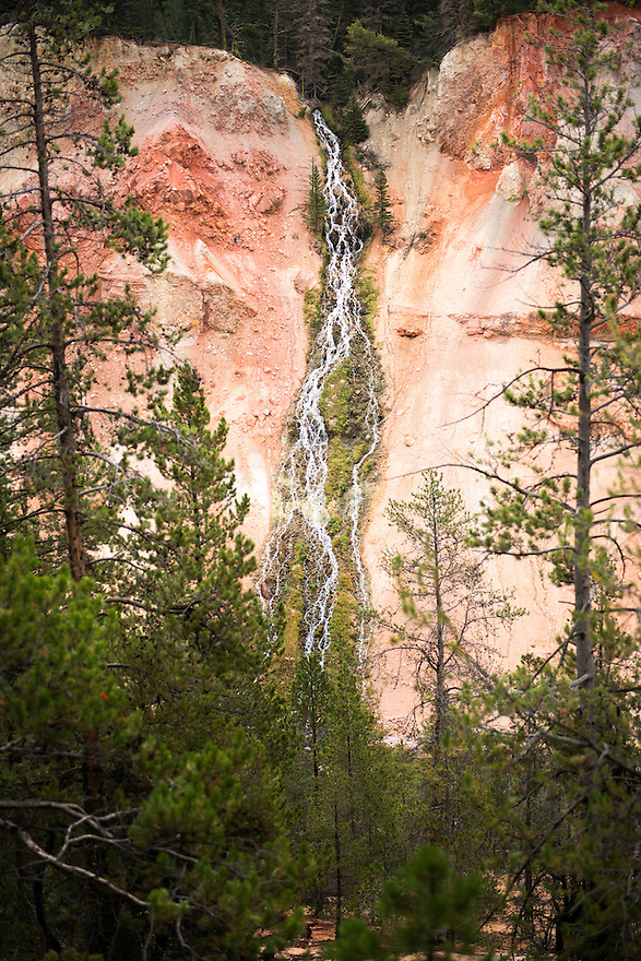 A spring cascades over rhyolitic soil in the Grand Canyon of the Yellowstone in Yellowstone National Park.