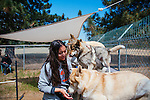 LAKE HUGHES - MAY 21: Paul and Colette Pondella have 10 wolfdogs in their pack at the Shadowland Foundation. Trainer Antoinette LaBomme assists in the morning training drils at the ranch. (Photo by Kendrick Brinson)