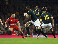 Pictured: Teboho Mohoje of South Africa (C) against Rhys Webb (L) of Wales Saturday 29 November 2014<br />
