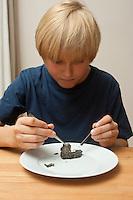 Kind, Junge untersucht Gewölle einer Eule, Schleiereule, Speiballen. Dazu wird das Gewölle auseinander präpariert und die unverdauten Knochen heraus sortiert, Untersuchung der Knochen dann unter dem Binokular