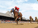 Consensus Thinking (no. 6) wins Race 3, Sep. 1, 2018 at the Saratoga Race Course, Saratoga Springs, NY.  Ridden by Jose Lezcano and trained by Rudy Rodriguez, Consensus Thinking  finished 4 1/2 lengths in front of Business Cycle (no. 4).  (Bruce Dudek/Eclipse Sportswire)