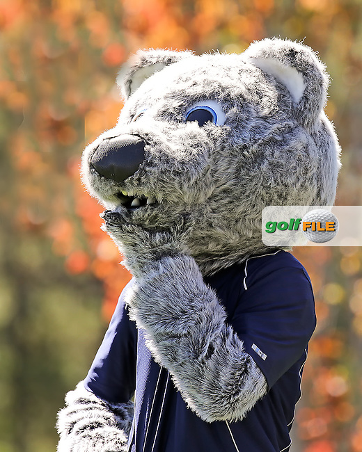 02 AUG 13  The University of Nevada WOLF got loose during Friday's Second Round action at The Reno Tahoe Open at The Montreux Country Club in Reno, Nevada.  (photo:  kenneth e.dennis / kendennisphoto.com)