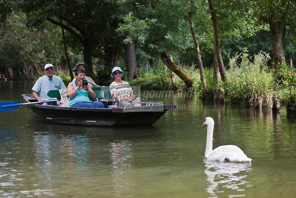 Europe/France/Poitou-Charentes/79/Deux-Sèvres/Sansais/La Garette:  Promenade en barque  plate  localement dénommées:batais avec batelier-guide, recontre avec un cygne