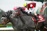 FUNABASHI,JAPAN-FEBRUARY 25: Win Bright #5,ridden by Masami Matsuoka,wins the Nakayama Kinen at Nakayama Racecourse on February 25,2018 in Funabashi,Chiba,Japan (Photo by Kaz Ishida/Eclipse Sportswire/Getty Images)