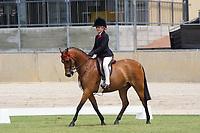 Rider 8-10