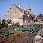 Vegetable garden of old almshouses, Marshfield, Wiltshire, England