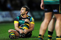 Nic Groom of Northampton Saints. Aviva Premiership match, between Northampton Saints and Sale Sharks on December 23, 2016 at Franklin's Gardens in Northampton, England. Photo by: Patrick Khachfe / JMP