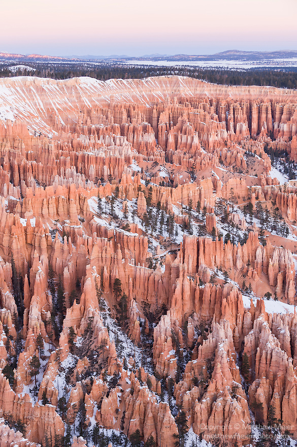 Bryce Canyon National Park, Utah; views of Bryce Amphitheater with snow before first light, from Bryce Point in winter