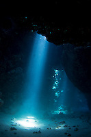 Shots of UNDERWATER caves and coral taken in Egypt in the Red Sea